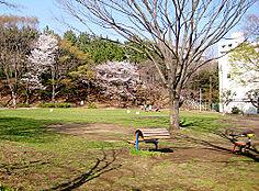 鶴川中央公園