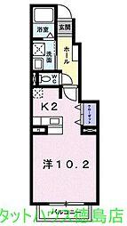 徳島県徳島市津田本町5の賃貸アパートの間取り