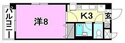 エルミオーレIII[505 号室号室]の間取り