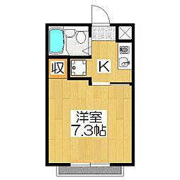 Casa Coraggio(カーサコラッジオ)[105号室]の間取り