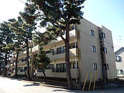 千葉県習志野市東習志野3丁目の賃貸マンションの外観