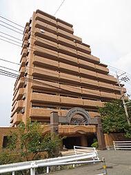 ライオンズガーデン松山紅葉町[8階]の外観