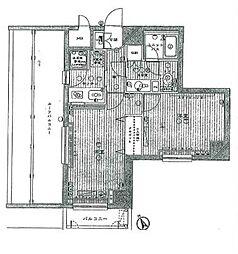 ルーブル学芸大学参番館[5階]の間取り