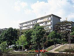 兵庫県宝塚市中山五月台5丁目の賃貸マンションの外観