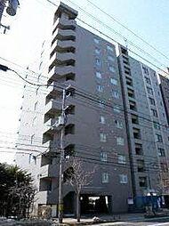 スカイアヴェニュー広和No15[9階]の外観