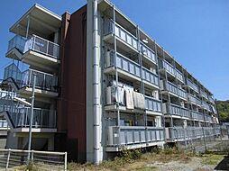 徳島県徳島市名東町1丁目の賃貸マンションの外観