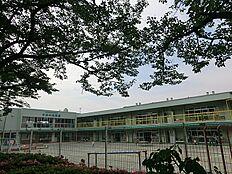 文化女子大学附属すみれ幼稚園 距離約1900m