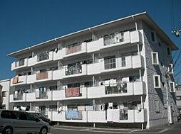 ドミール1061[4階]の外観