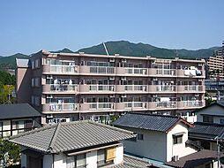 サンパラッツォII[3階]の外観
