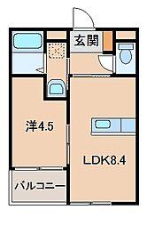 和歌山県岩出市桜台の賃貸アパートの間取り