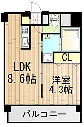 アニマーレ長堀[7階]の間取り