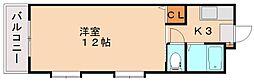 シャトレ和[4階]の間取り