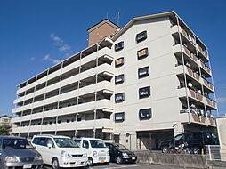 京都府京都市伏見区毛利町の賃貸マンションの外観