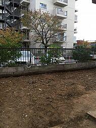 [一戸建] 東京都足立区中央本町3丁目 の賃貸【/】の外観