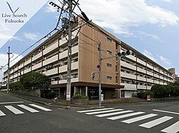 福岡高宮マンション[342号室]の外観