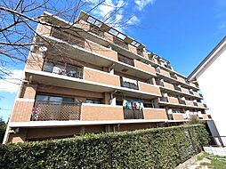千葉県四街道市和良比の賃貸マンションの外観