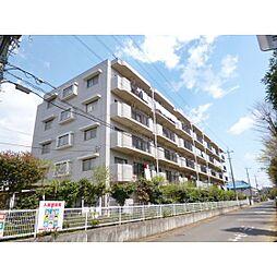 茨城県つくば市稲荷前の賃貸マンションの外観