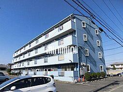 ハイツ須賀[1階]の外観