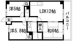 兵庫県伊丹市鴻池5丁目の賃貸マンションの間取り
