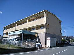 荒井駅 5.0万円