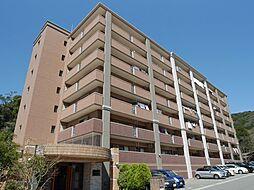 福岡県福岡市博多区金の隈3丁目の賃貸マンションの外観