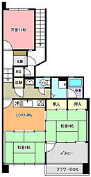 OHANA COURT 1号棟[407号室]の間取り