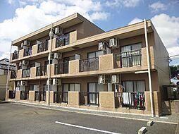 埼玉県加須市花崎2丁目の賃貸マンションの外観