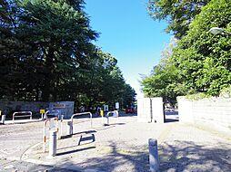 シティパル小金井[2階]の外観