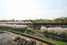 最上階から桜がきれいです.,3LDK,面積63.09m2,価格1,290万円,熊本市電B系統 杉塘駅 京町口下車 徒歩5分,,熊本県熊本市西区上熊本2丁目