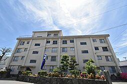 徳島県徳島市南昭和町3丁目の賃貸マンションの外観