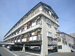 ドリームハウス1[3階]の外観