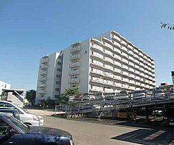 京都府京都市中京区西ノ京島ノ内町の賃貸マンションの外観