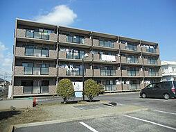 神奈川県平塚市徳延の賃貸マンションの外観
