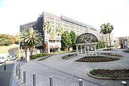横浜市金沢区大川