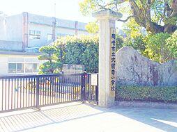 大樹寺小学校 約600m