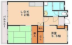 福岡県福岡市南区向野1丁目の賃貸マンションの間取り