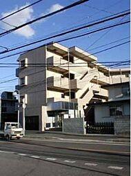 千葉県柏市富里2丁目の賃貸マンションの外観