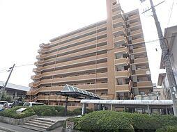ダイアパレス京都蒔絵町804号室[8階]の外観
