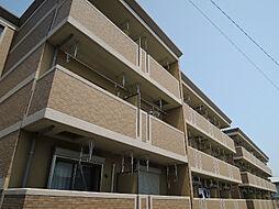 ワンシーダーヒルズ[3階]の外観