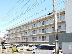 神奈川県相模原市南区上鶴間本町1丁目の賃貸マンションの外観