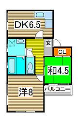 ティーハイム寺島[303号室]の間取り