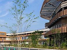 iias高尾は、大型スーパーマーケットを中心とした食物販や、ファッション・家具など、衣食住に関する品揃え・サービスが充実した、大型ショッピングセンターです。