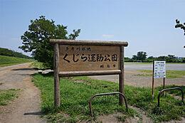 多摩川緑地くじら運動公園 1180m