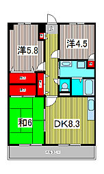 バルトハイム[3階]の間取り