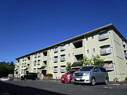 滋賀県湖南市石部南8丁目の賃貸マンションの外観