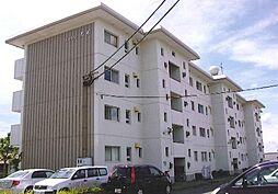 シャトレ若杉[3階]の外観