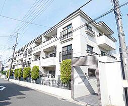 京都府京都市伏見区住吉町の賃貸マンションの外観