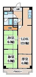 大阪府東大阪市角田1丁目の賃貸マンションの間取り