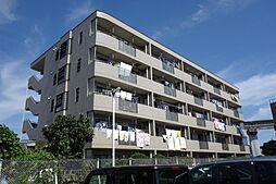 東京都立川市柏町1丁目の賃貸マンションの外観