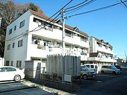 にしき今泉新町ハイツIII[1階]の外観